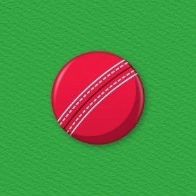 Cricket Ball Button Badge