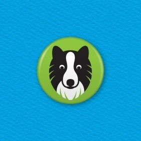 Border Collie Dog Button Badge